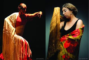 FlamencoNatural<br>שרון שגיא